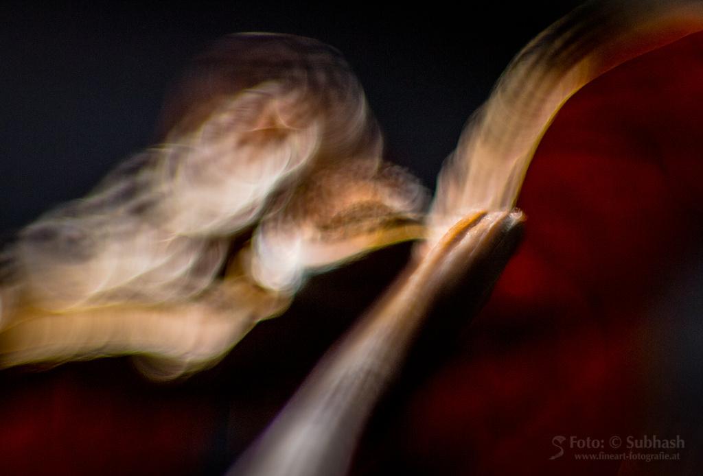Subhash | Tod du wirst meine letzte Liebe sein. Digitale Fotografie, großteils mit Spezialoptik, Pigment-Inkjet-Druck, 38 x 57cm